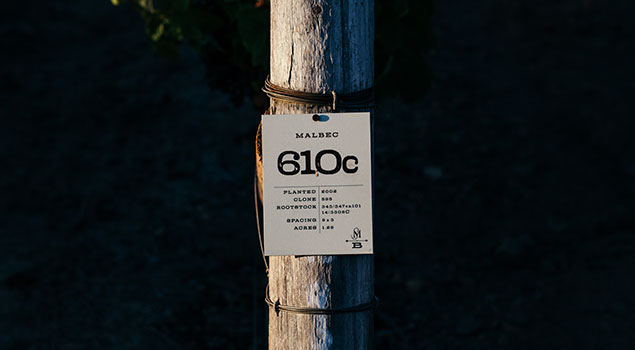 Mt. Brave Vineyard Identification