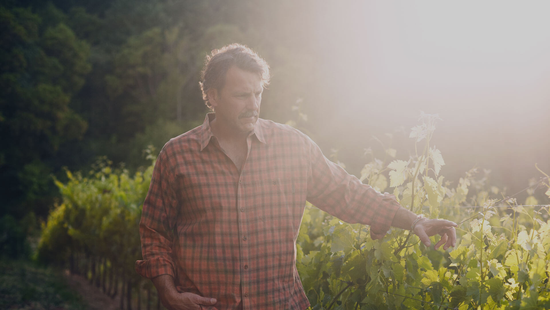 Winemaker Chris Carpenter